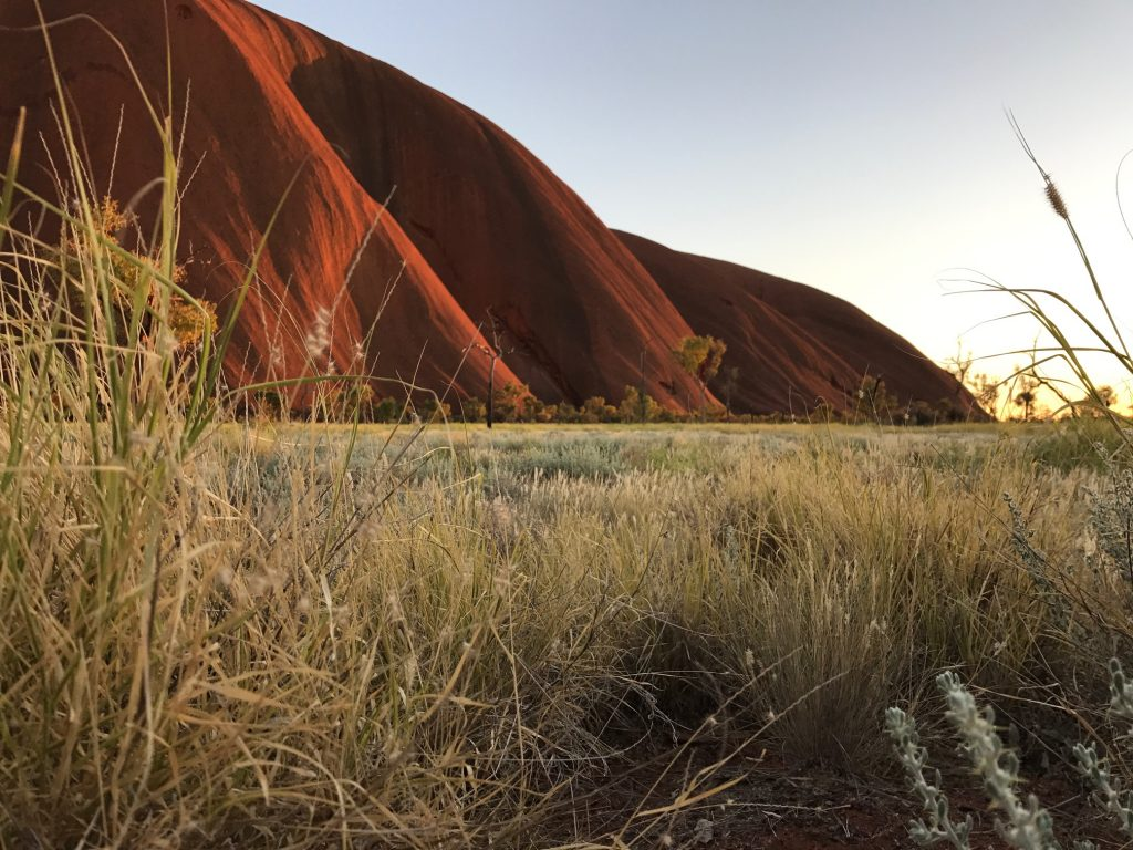 Uluru Surroundings